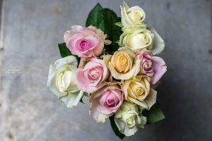 Bild von pastellfarbenen Rosen