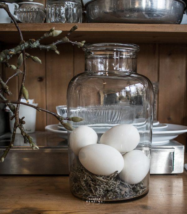 Bild zeigt Ei